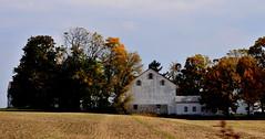 barn and windmill (bluebird87) Tags: barn windmill nikon d300