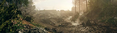 Aftermath (D u b l) Tags: ea dice electronic arts photoshop world war i 1 one single player mode fps first person shooter bf1 video game screen shot screenshot pc outdoor landscape forest army camp