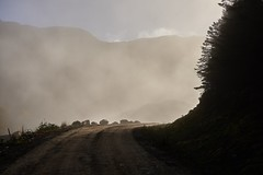 Misty mountain road in the Crianlarich Hills (neilsimpson515) Tags: crianlarichhills forestry forestrycommission scotland highlands scottishhighlands nikon nikond800e nikon2470