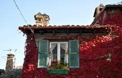 colors (pictureslikewords) Tags: santagata feltria colors autumn
