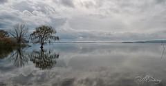 Nel mondo un solo colore, tace il suono del vento (piselli.antonella) Tags: nuvole riflessi lago trasimeno autunno novembre