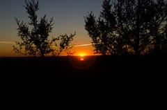 30102016-DSC_6773 (Ral de la Montaa) Tags: burgos candelrolobos espaa hontoriadelpinar misfotografas rutasdesenderismo atardeceres