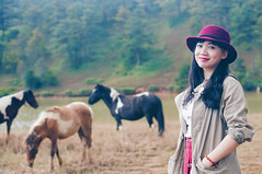 Da Lat (dolosan) Tags: dalat vietnam travel animal horse girl people vietnamese