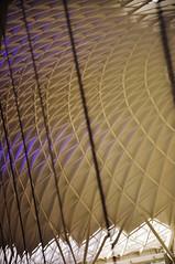 DSC_1379 [ps] - Too, Too Tremendous (Anyhoo) Tags: anyhoo photobyanyhoo kingscross kingscrossstation london england uk new modern architecture refurbishment rebuild canopy roof sweep arch vault truss lattice grid repetition geometric kgx johnmcaslanpartners