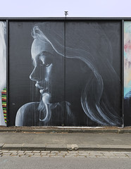 Rone Fitzroy 2016-11-18 (5D_32A1465) (ajhaysom) Tags: rone fitzroy streetart graffiti melbourne australia canoneos5dmkiii canon1635l