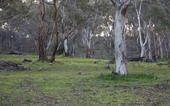 Lot 3 Yettie Road, Cockatoo Valley SA