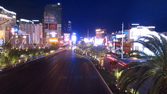 Las Vegas nights