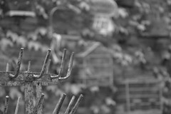 --- (CéCybo) Tags: blackandwhite bw white black byn blancoynegro blanco monochrome nikon noir noiretblanc negro nb blanc monochroma negroyblanco nyb incoloro monochromie scharwz d3100 nikond3100