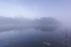 Light Glow (phodru) Tags: lake fog landscape star lough mood atmosphere ethereal moonlight otherworldly