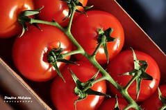 The passion of ...beautiful moments! (dimitra_milaiou) Tags: life light red food color colour green love kitchen vegetables tomato greek salad juicy nikon europe cut d live cook tasty row symmetry diagonal greece eat together passion taste 90 dimitra d90  milaiou