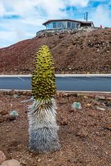 Haleakala Volcano, Maui - 8 (www.bazpics.com) Tags: park mountain rock landscape volcano hawaii lava us amazing scenery rocks unitedstates cone extreme maui national haleakala valley ash hi volcanic devastation cinder dormant cindercone kula devastated