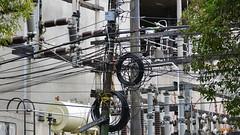 Mexico City Power (Condesa) (Carl Campbell) Tags: mexicocity cables ciudaddemxico