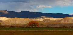 North Montrose County Colorado 2015 (johnabraham8936@bellsouth.net) Tags: uploaded:by=flickrmobile flickriosapp:filter=nofilter