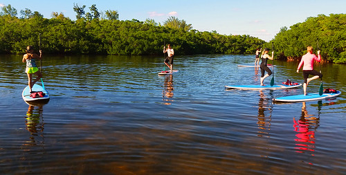 11_30_15 Paddleboard Yoga in Lido Mangroves FL 05