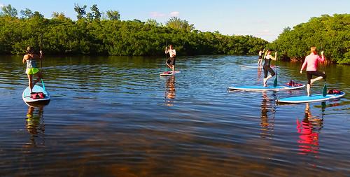 11_30_15 Paddleboard Yoga in Lido Mangroves FL 05