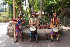 Adventureland Drummers
