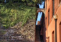 Arched Stone Staircase, Georgetown, Washington, D.C. (PhotosToArtByMike) Tags: film movie washingtondc dc washington districtofcolumbia georgetown exorcist exorciststairs stonestaircase nationscapital