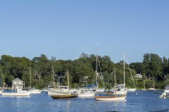 Sailboats Under the Moon (biesterd11) Tags: cape cod capecod water sailboat sail boat moon full massachusetts ma falmouth