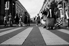 Crosswalk (Isengardt) Tags: crosswalk zebracrossing pedestriancrossing pedestrians zebra menschen leute people laufen walk street strase unten streifen black white schwarz weiss bw sw monochrome monochrom einkaufen shopping knigstrase schlossplatz stuttgart badenwrttemberg deutschland germany europe europa olympus omd em1 1250mm crossing berqueren