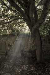 Rays Of Heavenly Light Duddingston (Colin Myers Photography) Tags: duddingston kirk duddingstonkirk edinburgh old scotland village church chuchyard graveyard crepuscular rays crepuscularrays heavenly light spooky eatheral arthurs seat scottish colin myers photography colinmyersphotography