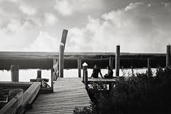 DR1-025-11 (David Swift Photography Thanks for 18 million view) Tags: davidswiftphotography newjersey leedspoint marsh wetlands docks piers pilings candidportrait seashore yashicat4 ilfordxp2 film 35mm