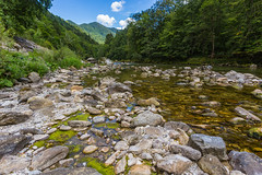 Rivers sprawl across Slovenia (danjama) Tags: soasource soa slovenia river lake water nature landscape beautiful tranquil green forest rocks stones shrubs calm travel canon6d 2035usm feelslovenia