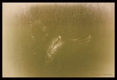 SUDDEN IMPACT (Pat Newton Photography) Tags: bird impact collision nature imprint frost canon6d