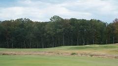 No. 12 green complex elevation view (cnewtoncom) Tags: mossy oak golf club mississippi gil hanse architecture gilhanse golfarchitecture mossyoakgolfclub