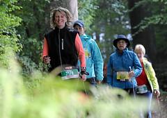 Hallwilerseelauf: 10 Kilometer-Lauf im Wald