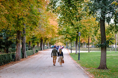 Disfrutando el otoño en pareja (dprats) Tags: fujixpro2 autumn fujinon35mmf2wr europa comunidaddemadrid fall danielprats couple parque park spain apsc parquedelretiro fujifilm pareja fuji xpro2 madrid xtrans europe españa otoño espaã±a otoã±o es