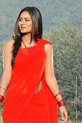 South Actress Deepika Das Hot in Red Sari Photos Set-5 (13)