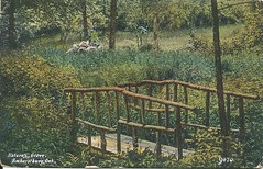Nature's Grove, Amherstburg, Ont. (Hear and Their) Tags: postcard amherstburg natures grove