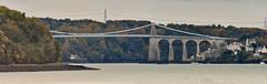The Old Menai Straights bridge from Bangor Pier (ukmjk) Tags: bangor pier menai straights bridge a5 a55 nikon nikkor d500 300mm f4 pf tc14e2 wales sea