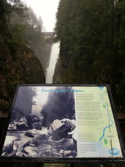 Cleveland Dam and Canyon sign (walneylad) Tags: capilanoriverregionalpark capilanoriver clevelanddam northvancouver westvancouver britishcolumbia canada canyon park parkland urbanpark woods woodland forest rainforest urbanforest tree branches trunk ferns moss trail river cliff water rocks waterfalls whitewater december fall autumn brown green white nature scenery
