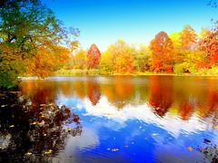 Autumn Lake Mirror (dimaruss34) Tags: newyork brooklyn dmitriyfomenko image sky clouds autumn fall prospectpark reflection