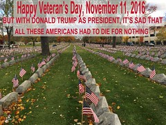 Veteran's Day, 2016 (The Devils in the Details) Tags: donaldtrump politicallyincorrect douchebag thewizardofoz justadick gop isis judygarland christianterrorist asshole margarethamilton bestpresidentever makedonalddrumpfagain sexdrugsandrockandroll hillaryclinton tinytrump plannedparenthood bigot dumptrump thewalkingdead republican pedophile usafreedomkids wickedwitchofthewest nastywoman badhombre conservative rape joyfulheartfoundation cruzcountry marriageequality gay equality normanreedus daryldixon downtonabbey pussy melaniatrump trumpsupporter jihad terrorist taliban fearthewalkingdead wifebeater walmart mexicanwall racism confederateflag nazi stumpjumpers religion islam hilaryclinton berniesanders adele thebeatles therollingstones music gardening democrat rainbow tednugent dolls acheetowiththecheesedustrubbedoff donaldtrumpspenis contraception abortion tinfoilhatsociety batteredwomansyndrome she'sacunt foxnews fake fantasyland thebirds liberal