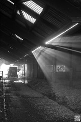 La ferme (Alex..H) Tags: bergerienationale rambouillet ferme nb bw rays rau lumiere light sun