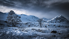 Early Winter in Glencoe (Images by William Dore) Tags: scotland visitscotland highlands winter ice snow cold trees uk nikon d810 nikond810 landscape outdoors outside