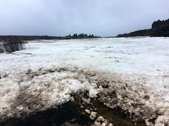 ingvellir national park (Bex.Walton) Tags: reykjavik travel iceland ingvellir thingvellir nationalpark snow