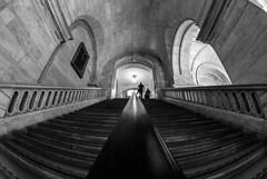 The New York Public Library (PrimiFer) Tags: ny new york public library escalera stairs railing barandilla peleng gran angular nikobn d80 blanco negro byn bw