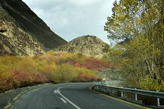 Autumn colors. (najeebmahmud) Tags: nikon nikond810 nature nikkor2470mm nikkor d810 2470mm landscape pakistan serene clouds colorful karakoram mountains highway yellow sky lines red road trees fence wow white awesome green