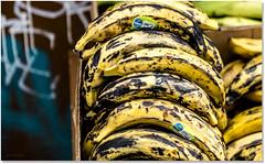 I'm Thinking Banana Bread (Sigpho) Tags: sigpho nikon nice