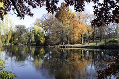 Pool in Autumn II (Joe Josephs: 2,861,655 views - thank you) Tags: autumn centralpark fall fallcolor fallfoliage nyc newyorkcity travel travelphotography urbanparks landscape landscapephotography
