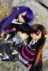 .: Vicky, Alekse & Kelly :. (.: Miho :.) Tags: pullip taeyang doll dolls groove jun planning junplanning suigintou 2007 rozen maiden peach pit anime manga h naoto hnaoto clothing nina arion obitsu 27cm parabox toy figure adsiltia outfit jade military gothic lolita sister sisters brother brotherhood