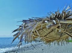 Viva Mexico (2015) (France-) Tags: 545 lacruzdehuanacaxtle mexique mexico plage beach palmumbrella ocanpacifique minimalism nayarit ciel sky
