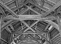 170A3086 (Ricardo Gomez A) Tags: carbodur wood bridges strengthening