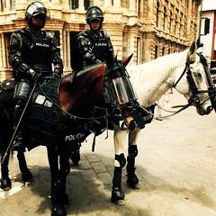 Mounted Police Cuenca Ecuador (Lonfunguy) Tags: caballos ecuador police policia cuenca mountedpolice policehorses azuay nationalpolicia