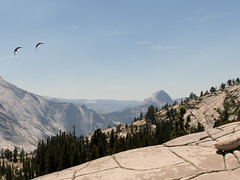 (xPCFCAn) Tags: yosemite olmsteadpoint