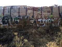 GUSHE YUCK (UTap0ut) Tags: california art cali graffiti la los paint angeles socal cal yuck graff gushe utapout