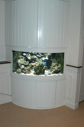 150 Gal Off The Shelf Living Reef - Corporate Office - CT (2)